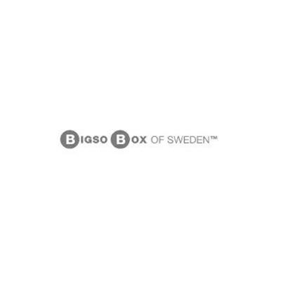 bigso_logo